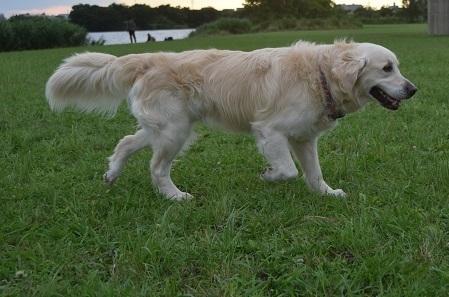 20062004.jpg